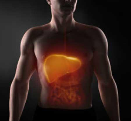 Hematomas en el Higado y como afectan en nuestra salud